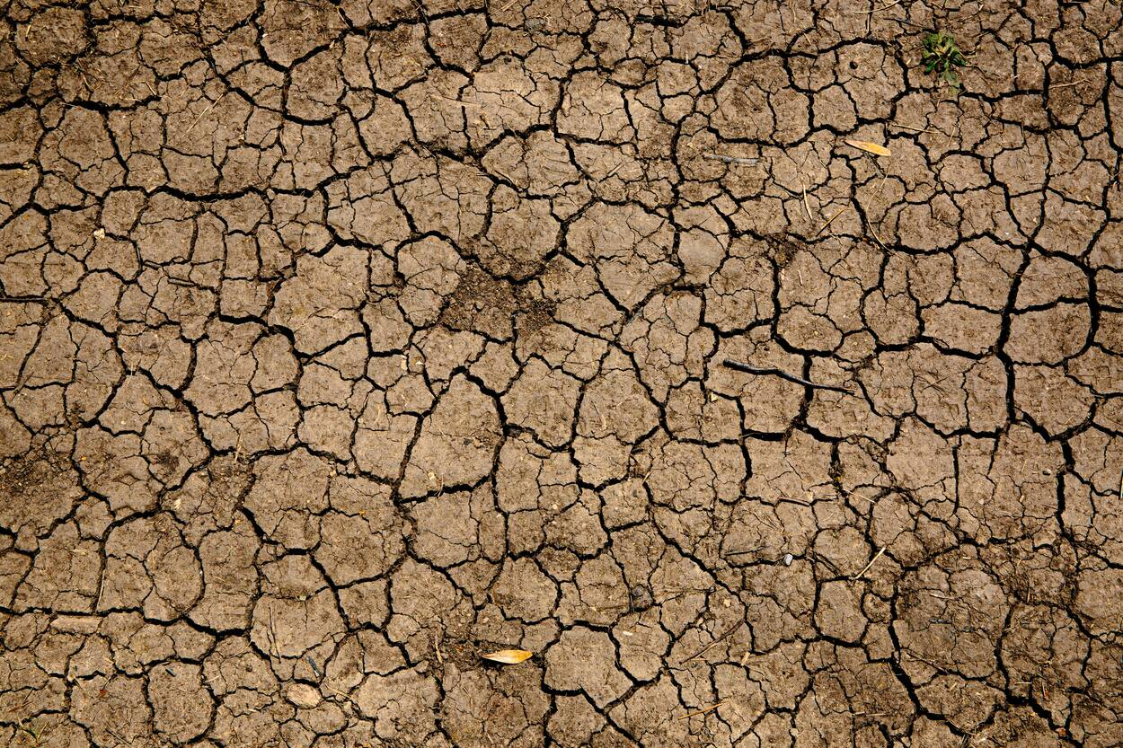 drought image